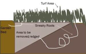 Keeping your garden beds edged at a 30 -45 degree angel will help deter grass roots from wandering in.