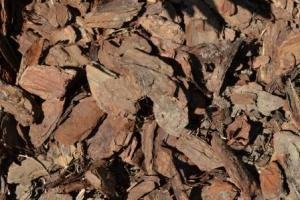 Organic mulch, such as woodchips, are a must-have for any garden. They prevent water loss, protect roots and keeps weeds at bay.